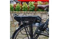 E-bike bescherming